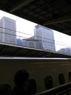 東京、雪です。